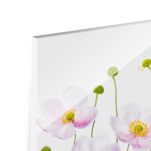 Glas Spritzschutz - Japanische Anemonen - Querformat - 4:3
