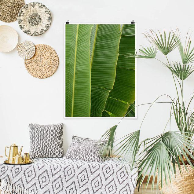 Poster - Banana Leaves - Hochformat 3:4