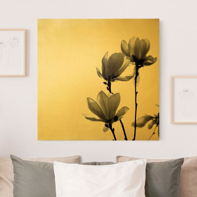 Leinwandbild Gold - Frühlingsbote Magnolie Schwarz Weiß - Quadrat 1:1
