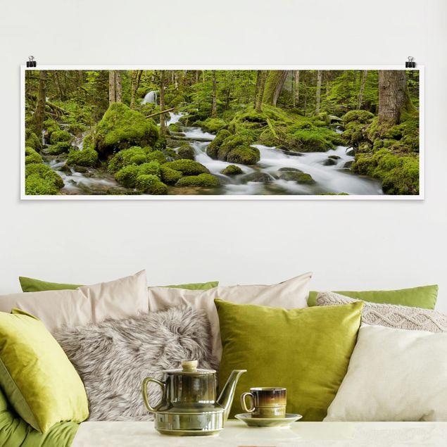 Poster - Moosbedeckte Steine Schweiz - Panorama Querformat
