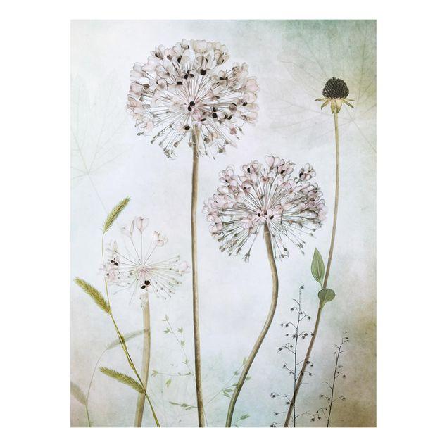 Forex Fine Art Print - Lauchblüten in Pastell - Hochformat 4:3