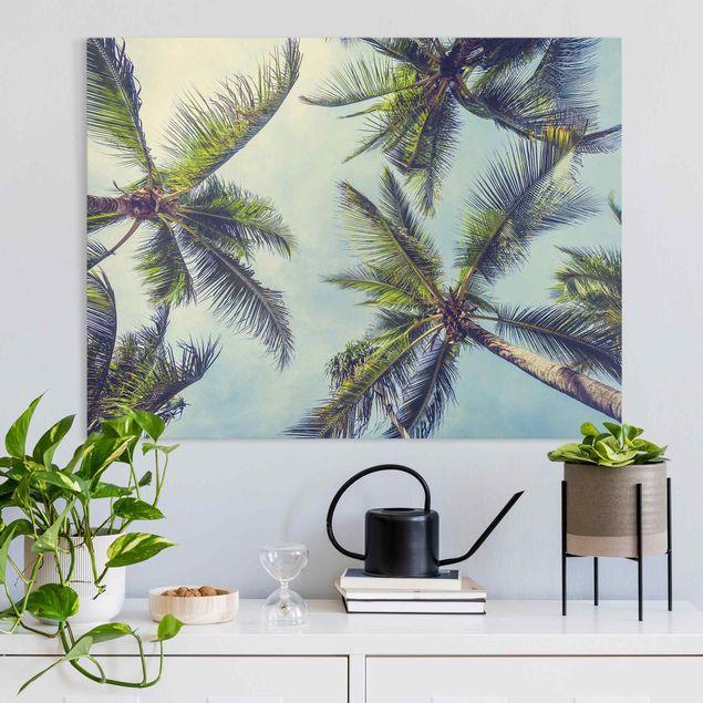 Leinwandbild - Die Palmen - Querformat 4:3