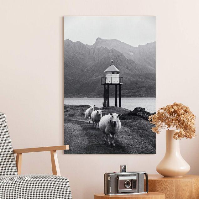 Leinwandbild - Drei Schafe auf den Lofoten - Hochformat 2:3