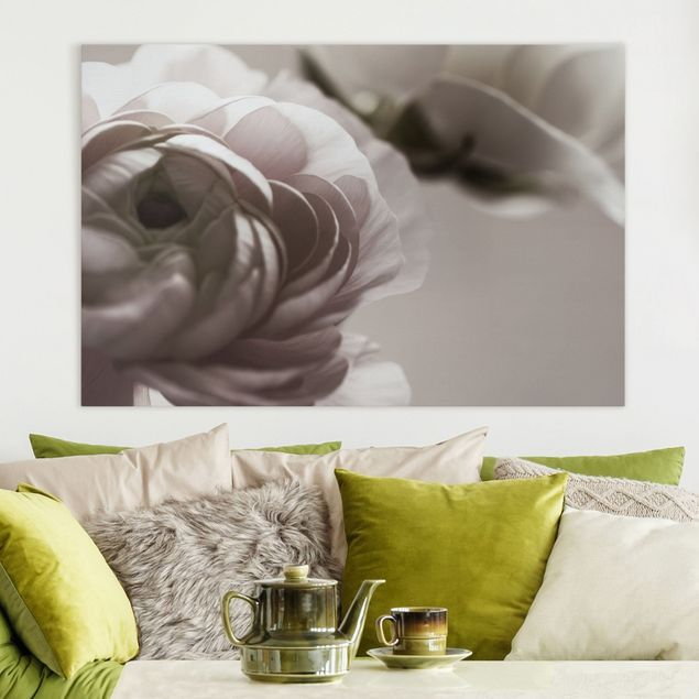 Leinwandbild - Dunkle Blüte im Fokus - Querformat 3:2
