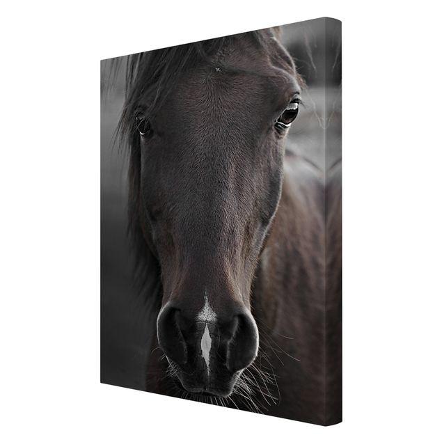 Leinwandbild - Dunkles Pferd - Hochformat 2:3