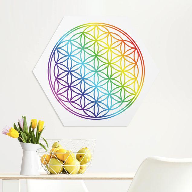 Hexagon Bild Forex - Blume des Lebens Regenbogenfarbe