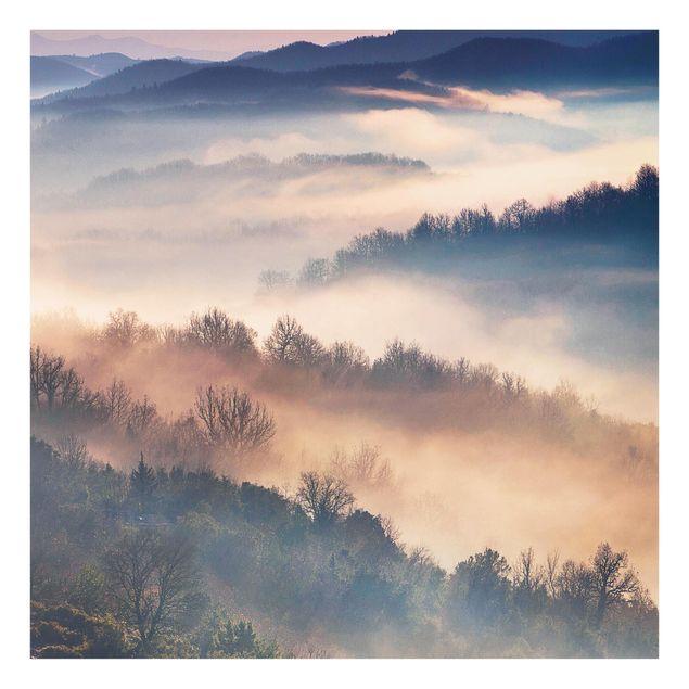 Glas Spritzschutz - Nebel bei Sonnenuntergang - Quadrat - 1:1