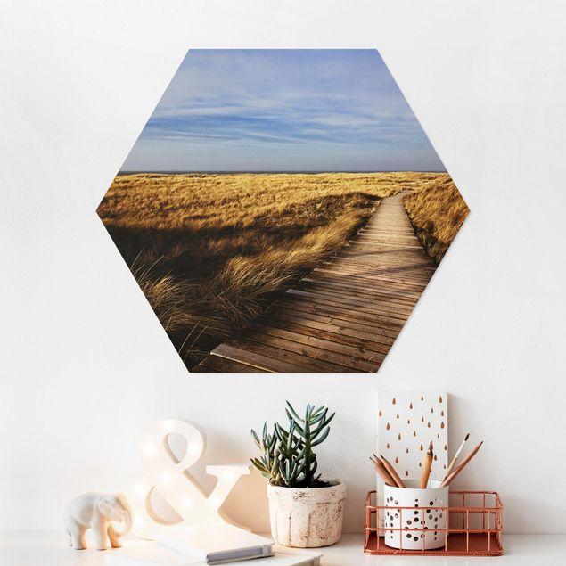 Hexagon Bild Forex - Dünenweg auf Sylt