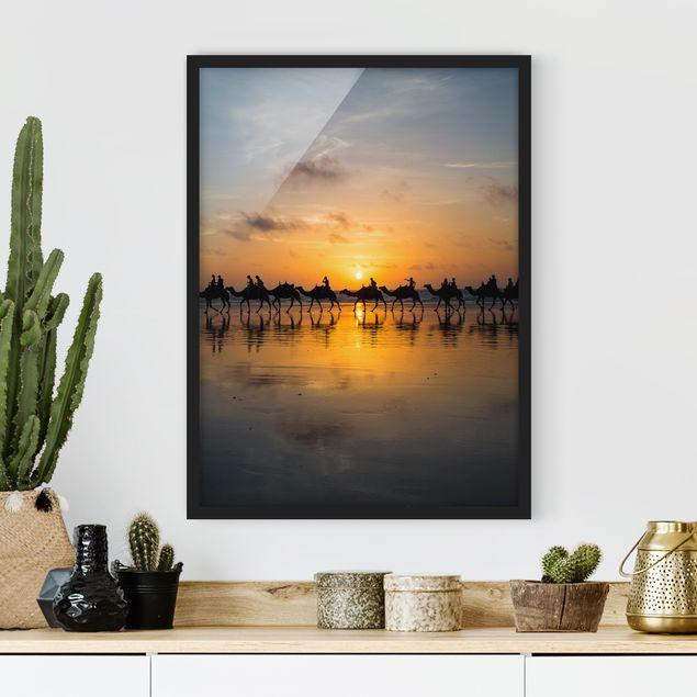 Bild mit Rahmen - Kamele im Sonnenuntergang - Hochformat 3:4