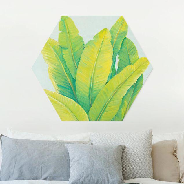 Hexagon Bild Forex - Gelbgrüne Bananenblätter