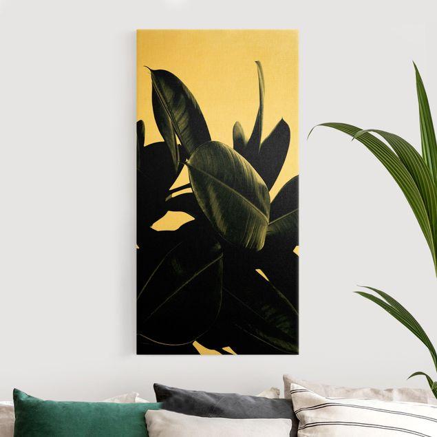 Leinwandbild Gold - Gummibaum Blätter Dunkelgrün - Hochformat 1:2