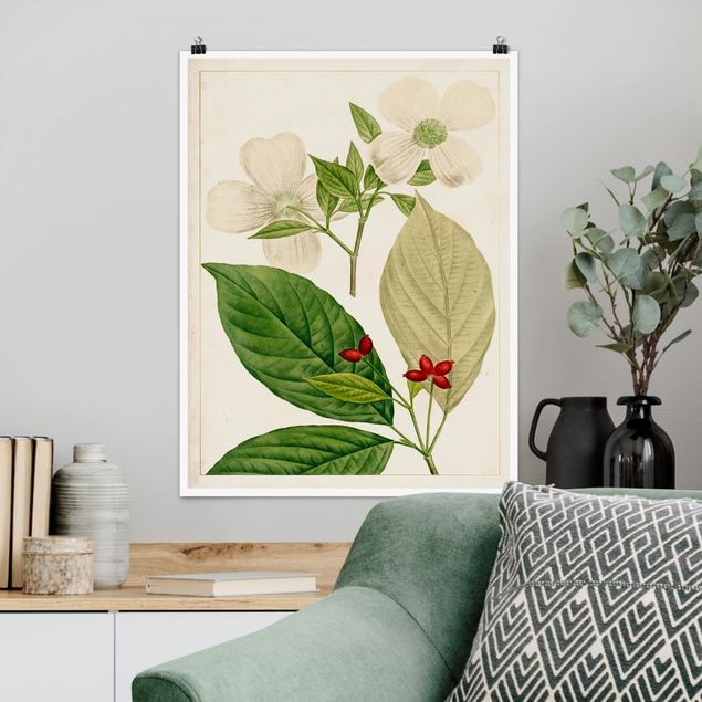 Poster - Tableau Blatt Blüte Frucht III - Hochformat 3:4