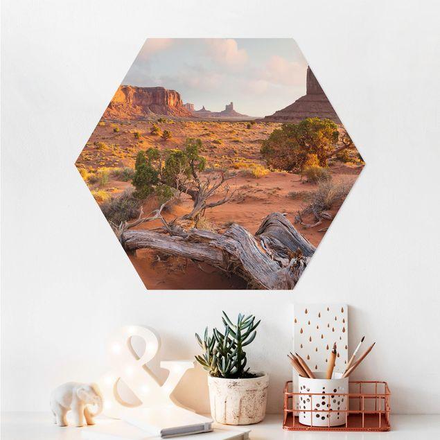 Hexagon Bild Alu-Dibond - Monument Valley Navajo Tribal Park Arizona