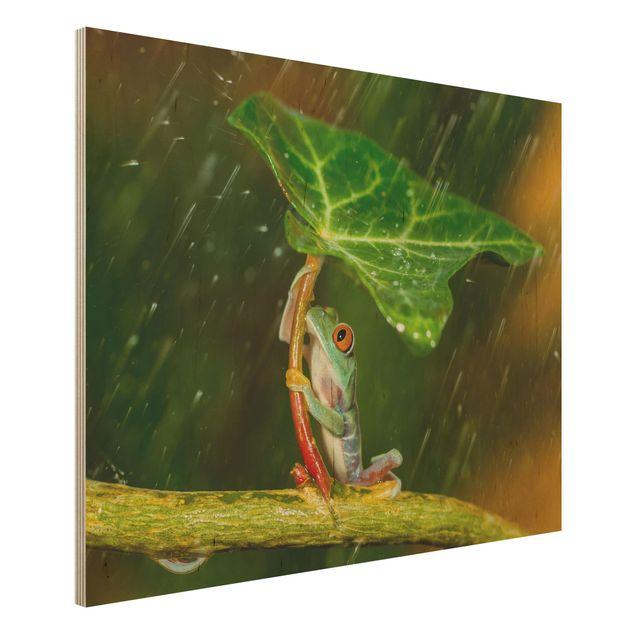 Holzbild - Ein Frosch im Regen - Querformat 3:4