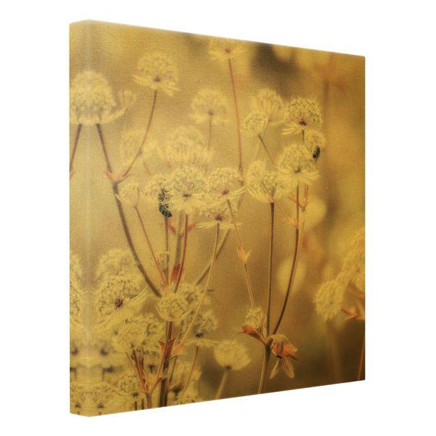 Leinwandbild Gold - Federleichte Wildblumen - Quadrat 1:1