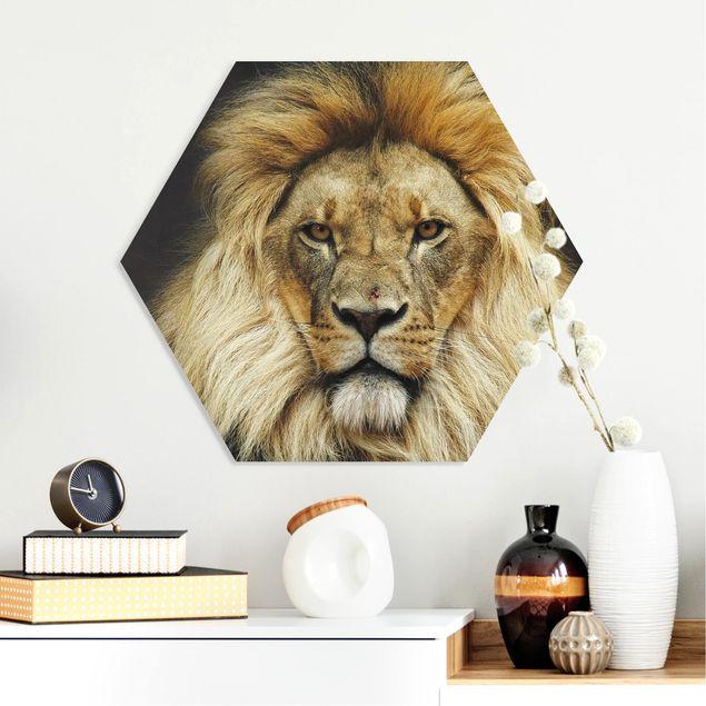 Hexagon Bild Forex - Wisdom of Lion
