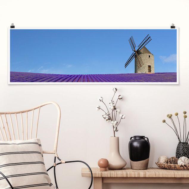 Poster - Lavendelduft in der Provence - Panorama Querformat