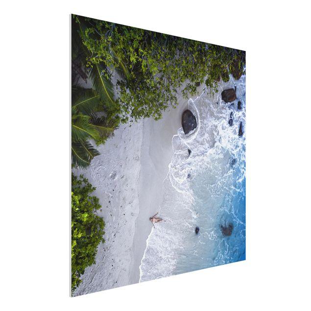 Forex Fine Art Print - Das Paradies auf Erden - Quadrat 1:1