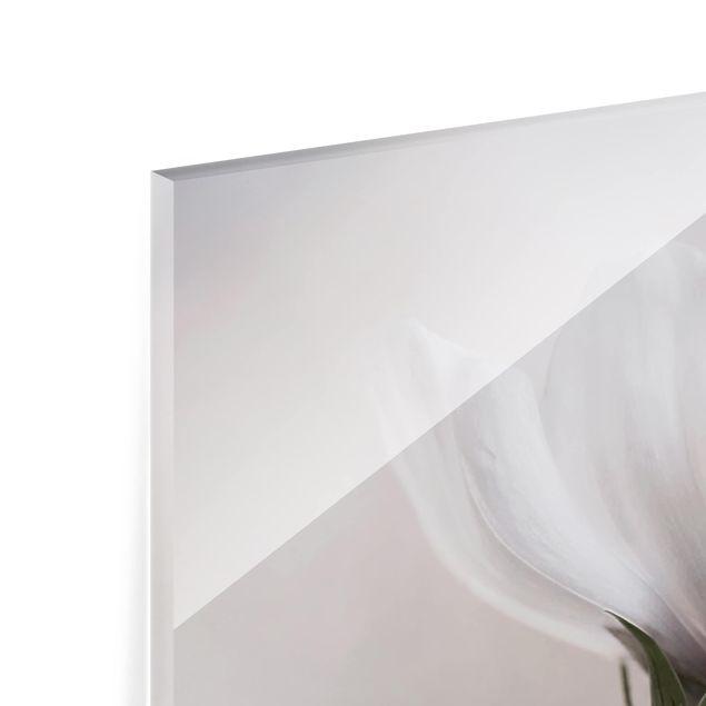 Glas Spritzschutz - Simply Cosmos - Quadrat - 1:1