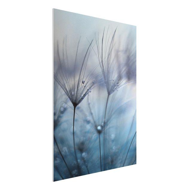 Forex Fine Art Print - Blaue Federn im Regen - Hochformat 4:3