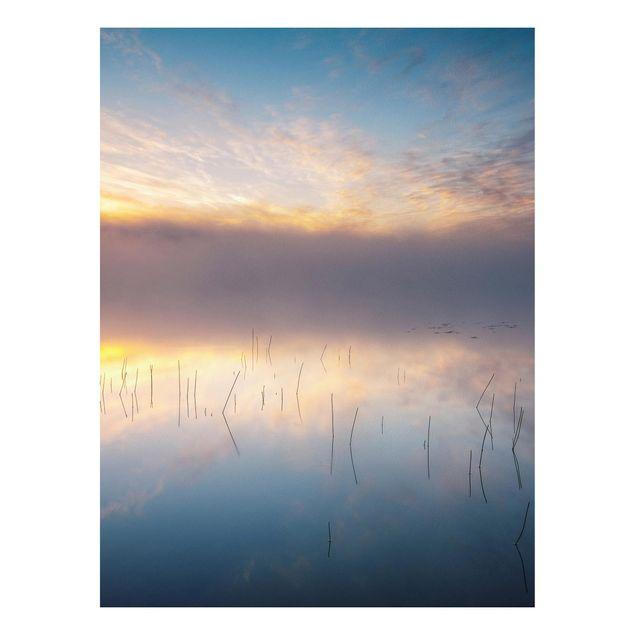 Forex Fine Art Print - Sonnenaufgang schwedischer See - Hochformat 4:3