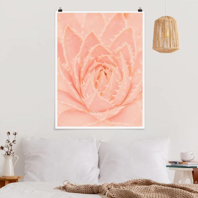 Poster - Rosa Blütenzauber Agave - Hochformat 3:4