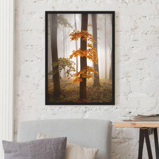 Bild mit Rahmen - Novemberwald - Hochformat 3:4
