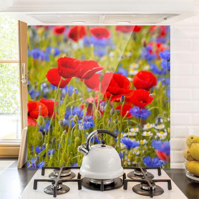 Glas Spritzschutz - Sommerwiese mit Mohn und Kornblumen - Quadrat - 1:1