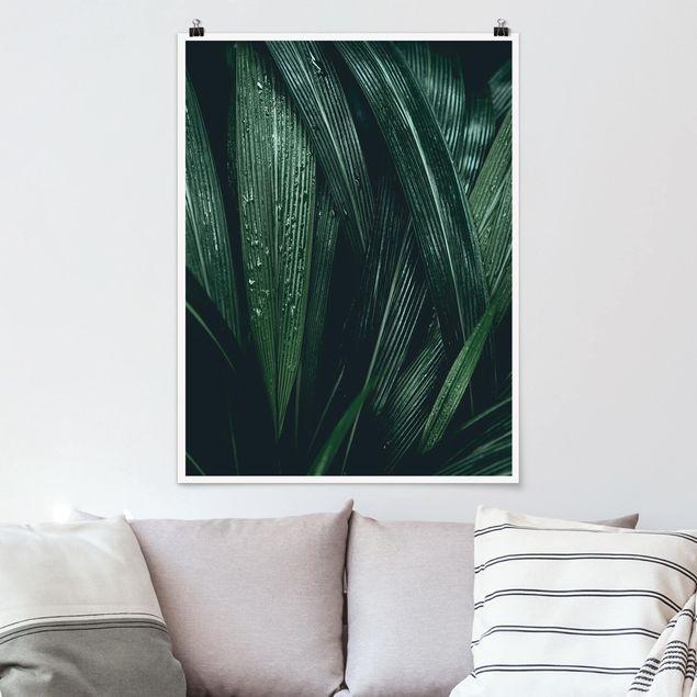 Poster - Grüne Palmenblätter - Hochformat 3:4