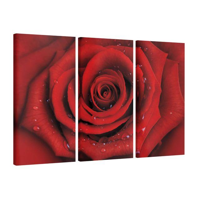 Elegante rote Rose mit Wassertropfen Leinwandbild Wanddeko Kunstdruck