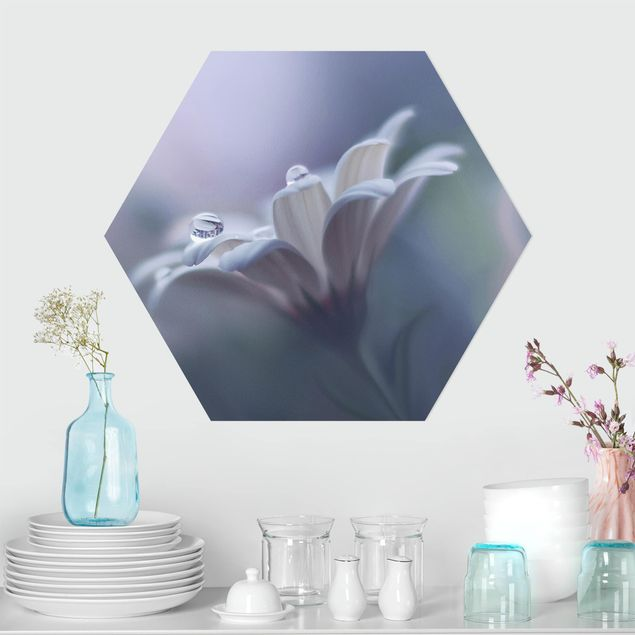 Hexagon Bild Alu-Dibond - Behind Closed Eyes