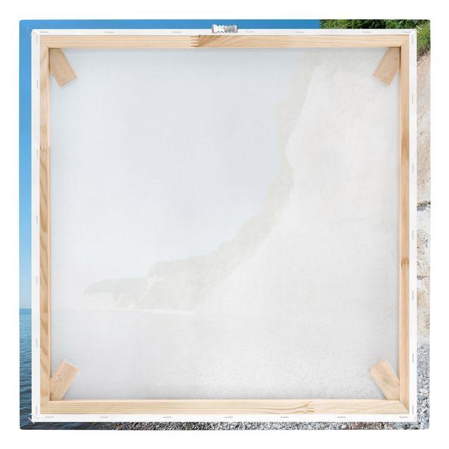 Leinwandbild - Kreidefelsen auf Rügen - Quadrat 1:1