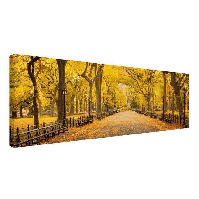 Leinwandbild - Herbst im Central Park - Panorama 3:1