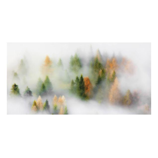 Forex Fine Art Print - Nebelwald im Herbst - Querformat 1:2