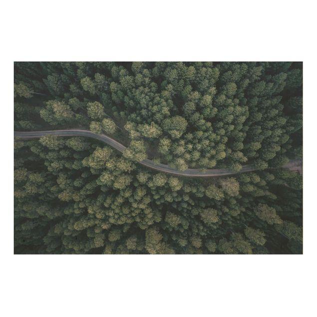 Holzbild - Luftbild - Waldstraße von Oben - Querformat 2:3