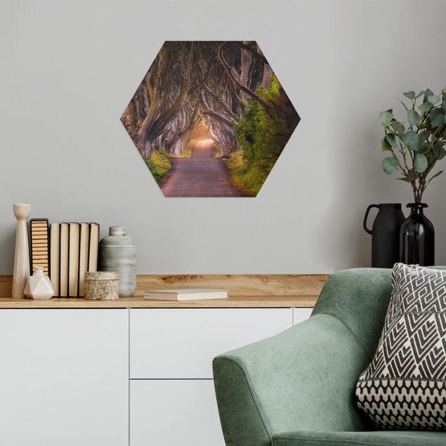Hexagon Bild Alu-Dibond - Tunnel aus Bäumen