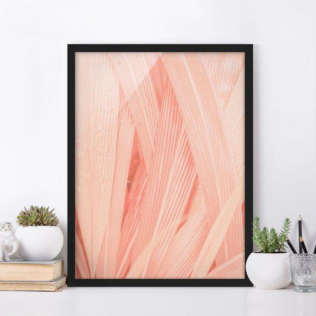 Bild mit Rahmen - Palmenblätter Rosa - Hochformat 3:4