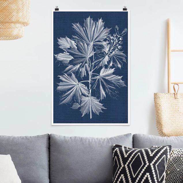 Poster - Denim Pflanzenstudie V - Hochformat 3:2