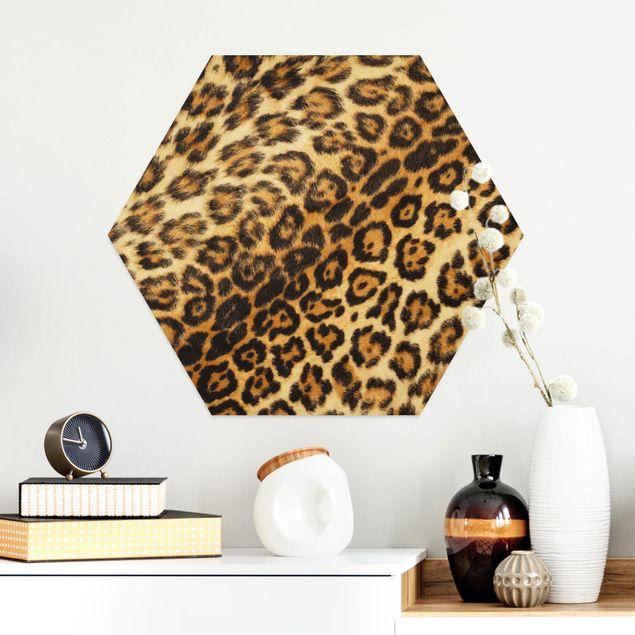 Hexagon Bild Alu-Dibond - Jaguar Skin