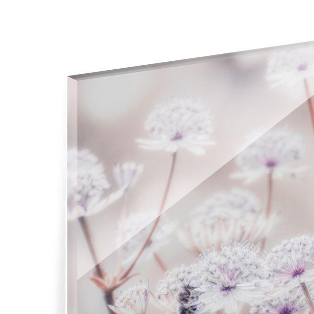 Spritzschutz Glas - Federleichte Wildblumen - Querformat 4:3