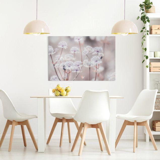 Leinwandbild - Federleichte Wildblumen - Querformat 3:2