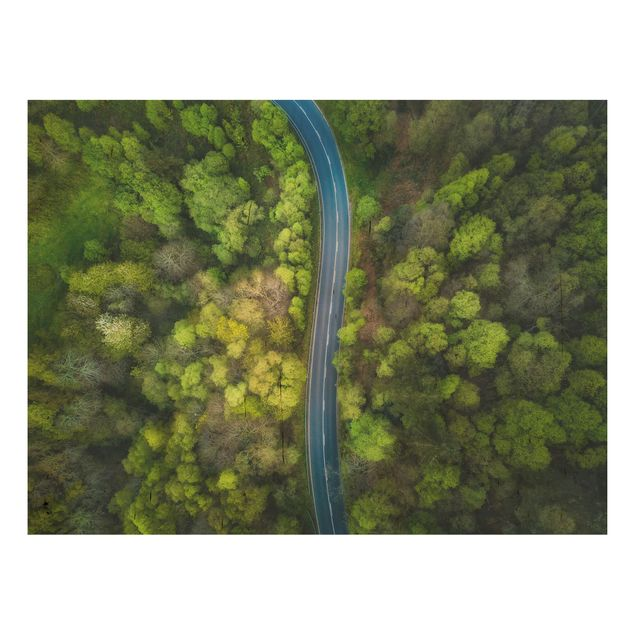 Holzbild - Luftbild - Asphaltstraße im Wald - Querformat 3:4