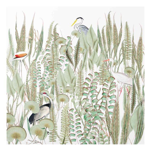 Spritzschutz Glas - Flamingo und Storch mit Pflanzen - Quadrat 1:1