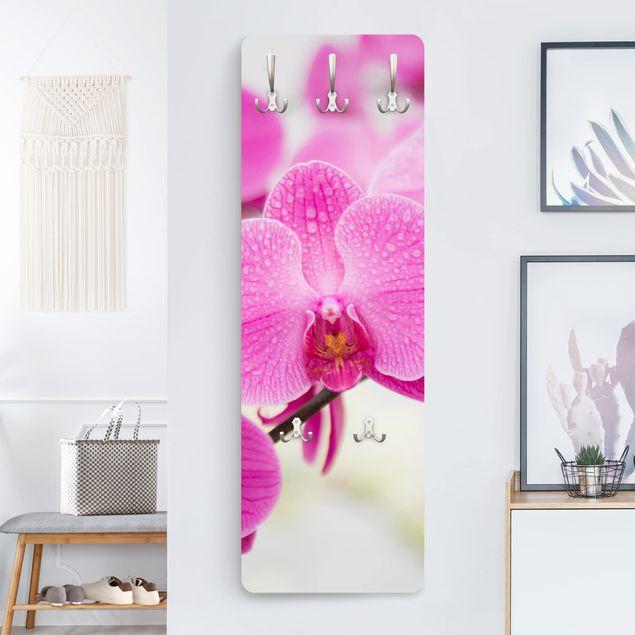 Garderobe - Nahaufnahme Orchidee