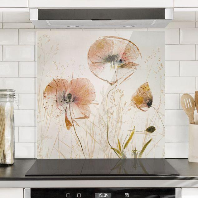 Spritzschutz Glas - Getrocknete Mohnblüten mit zarten Gräsern - Quadrat 1:1