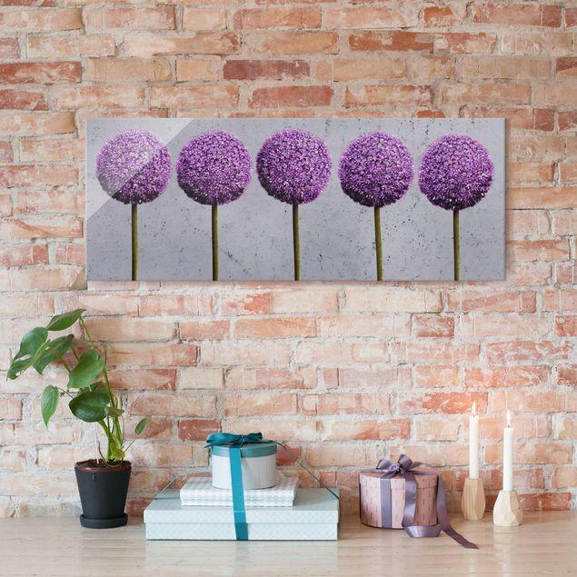 Glasbild - Allium Kugel-Blüten - Panorama Quer