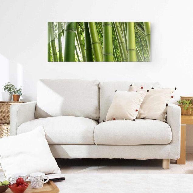 Glasbild - Bamboo Trees No.1 - Panorama Quer