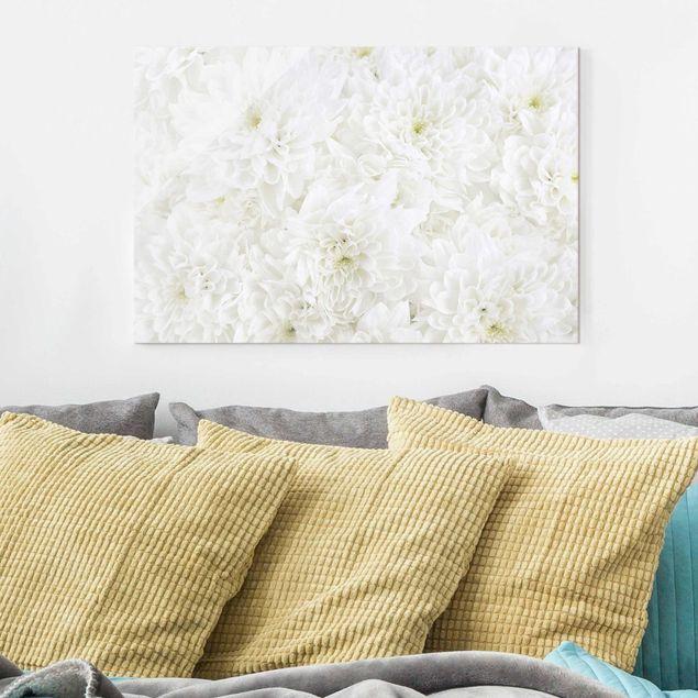Glasbild - Dahlien Blumenmeer weiß - Quer 3:2