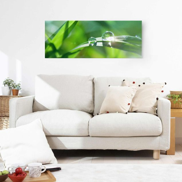 Glasbild - Green Ambiance II - Panorama Quer