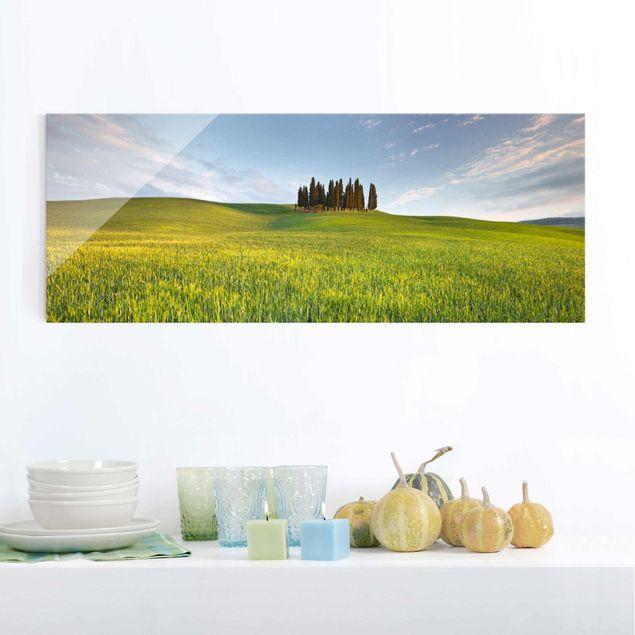 Glasbild - Grünes Feld in Toskana - Panorama Quer